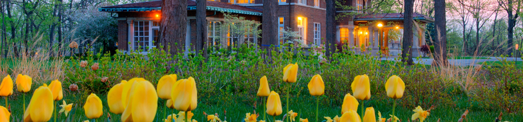 allision-mansion-tulips-at-dusk